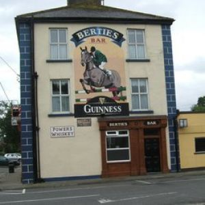 Berties Bar Dundrum